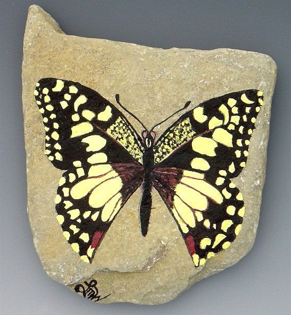 Checkered Swallowtail Painted on Ohio River Rock. $60.00, via Etsy.