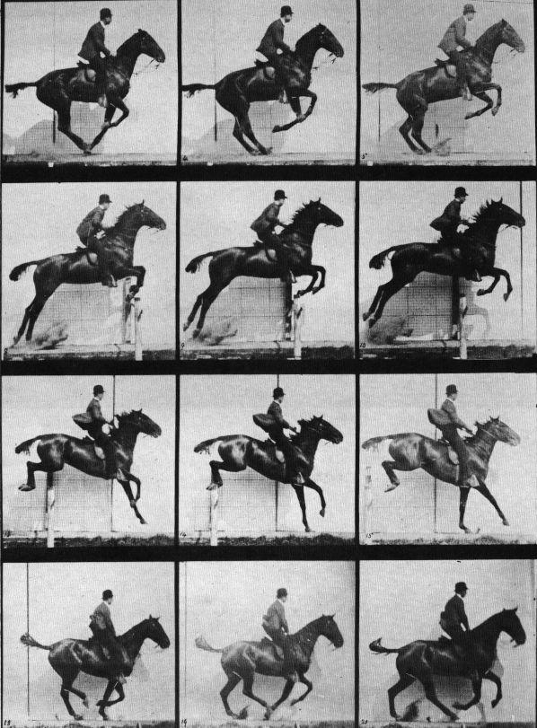"""Muybridge horse jumping - Eadweard Muybridge –  Muybridge desenvolveu um esquema para a captação instantânea de imagens. Seu trabalho envolveu fórmulas químicas para o processamento fotográfico e um disparador elétrico criado por John D. Isaacs. Em 1877, Muybridge resolveu a questão de Stanford com uma única foto do cavalo de corrida Occident (de propriedade de Stanford), """"voando"""" em meio ao galope."""