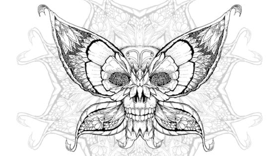 Vivid Owl Coloring Free Download coloring design