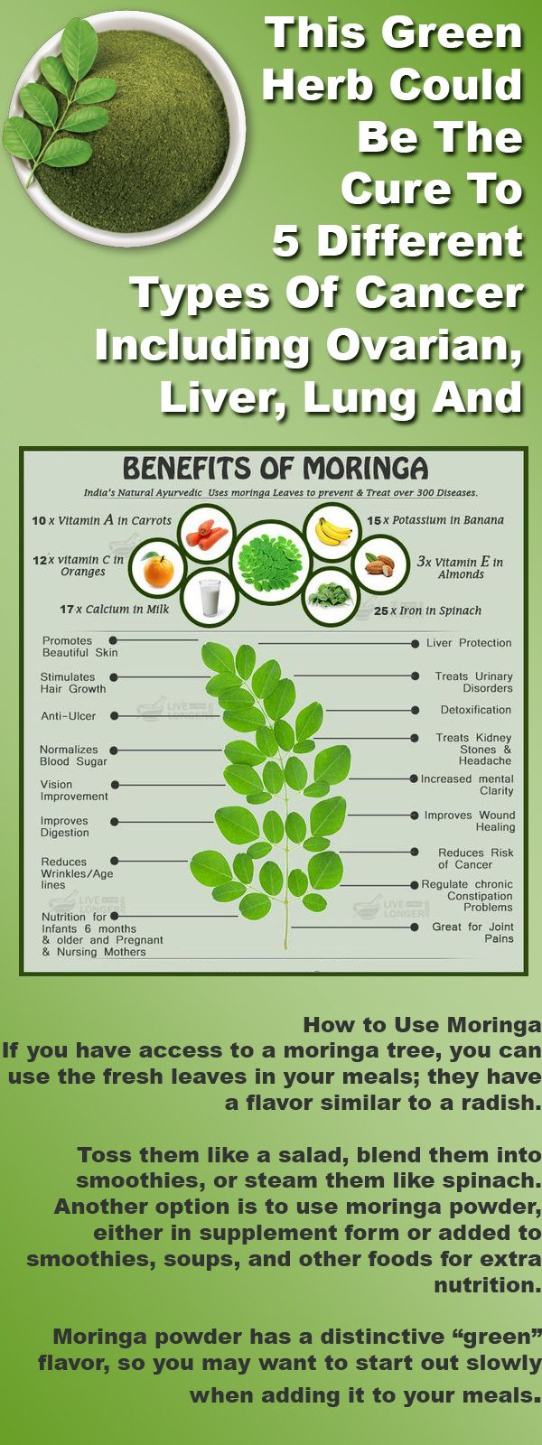 Moringa oleifera is a fast-growing tree native to South Asia and now found throughout the tropics. Its leaves have been