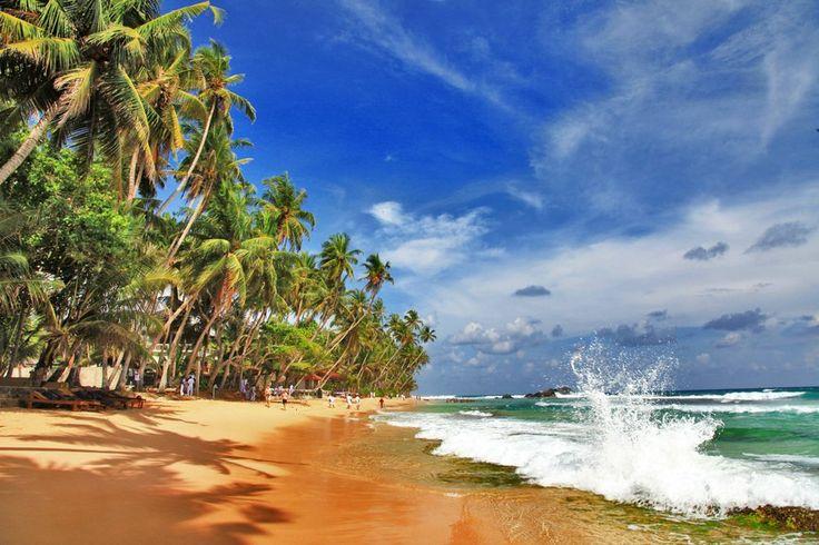 Шри-Ланка - древнейшая страна, известная на весь мир под названием Цейлон. Гордость острова - обширные чайные плантации и бескрайние рисовые поля. Глубокие традиции местного населения и в то же время свобода вероисповедания, многочисленные священные реликвии и храмы (в основном буддийские) привлекают сюда множество паломников.   Туристы едут в Шри-Ланку, чтобы увидеть красочный мир, полный экзотики, насладиться природой и искупаться в теплых водах Индийского океана. Бесконечные пляжи с…