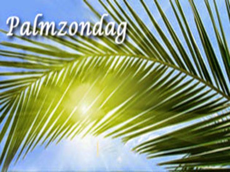 JEZUS en MARIA Groep.: Palmzondag
