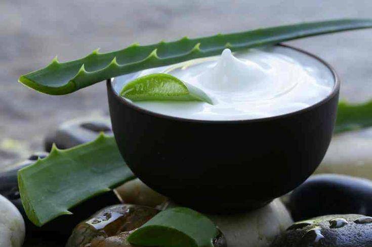 Cómo hacer una crema casera de aloe vera.    Ideal para estrias y marcas en la piel.... se tritura el aguacate y el aloe vera con un p0oco de aceite de oliva y se deja por 20 min