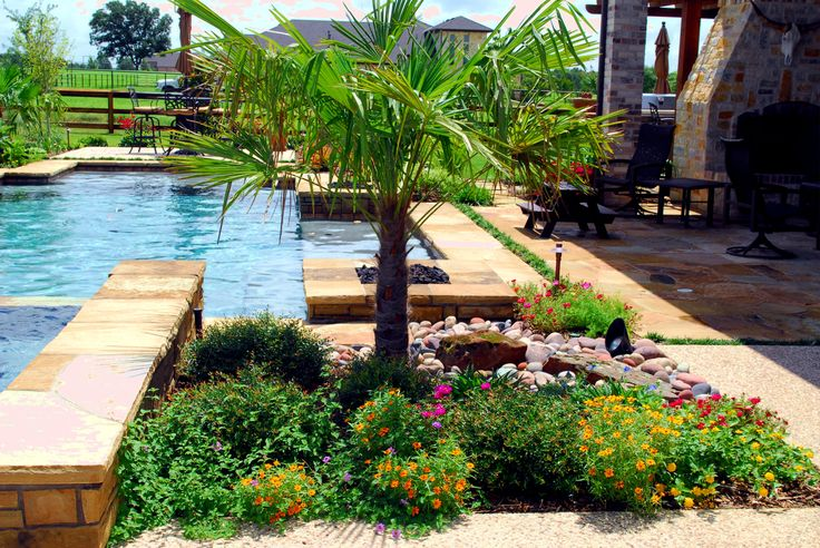 How about this tropical paradise at the bottom of your garden just beautiful im sure you will agree.