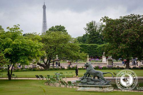 50 классных вещей сделать в Париже - Лувр Парк
