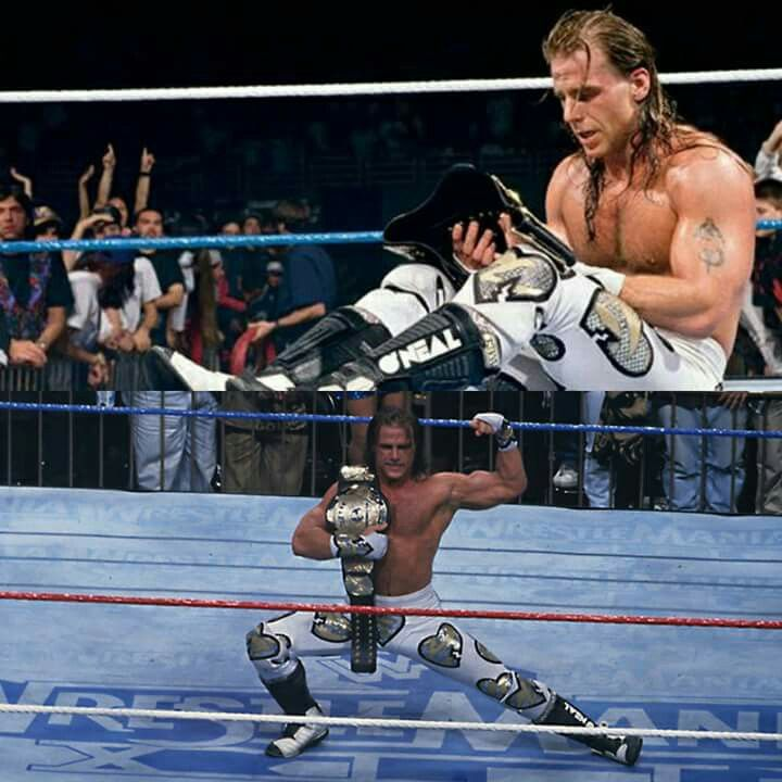 1784 best shawn michaels images on pinterest shawn michaels lucha shawn michaels wwe wwe wrestlers m4hsunfo Image collections