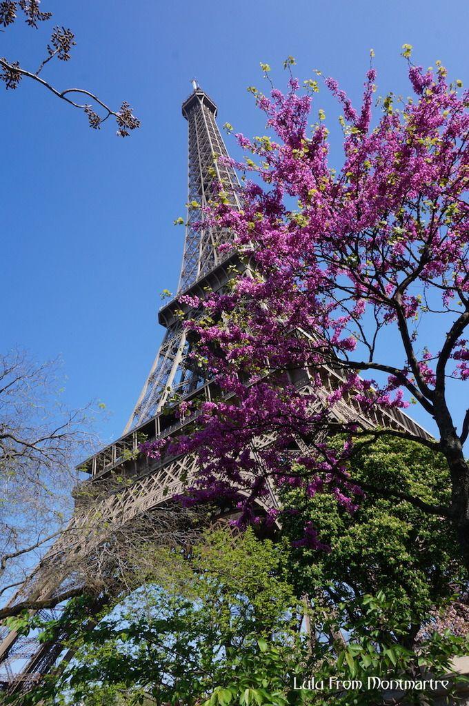 Tout en haut de la Tour Eiffel...