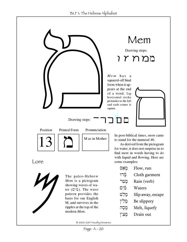 The Thirteenth Letter Of The Hebrew Alphabet Hebrew Lessons Hebrew Letters Learn Hebrew