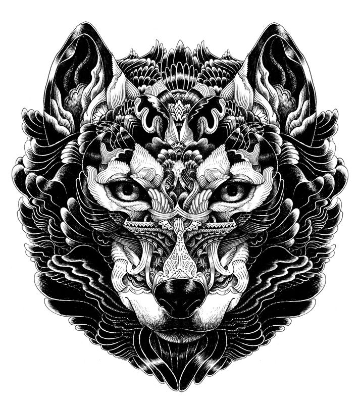 Wolf Drawings: 1000+ Ideas About Wolf Head Drawing On Pinterest