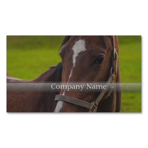 Brown Horse Portrait Business Cards