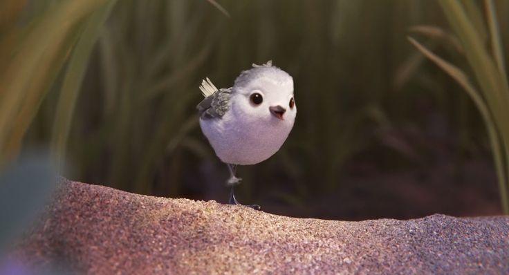 Piper van Pixar | De hartverwarmende film gaat over de kleine watersnip Piper. Het jonge vogeltje moet nog leren hoe hij voedsel moet zoeken langs de kustlijn. Maar gelukkig krijgt het beestje daarbij hulp van zijn moeder. | Photo © Pixar