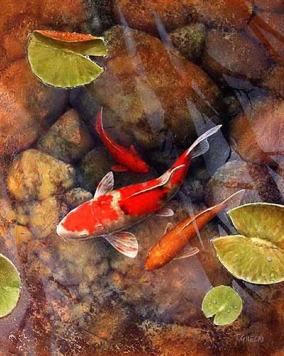 46 best koi illustration images on pinterest for Japanese koi painting