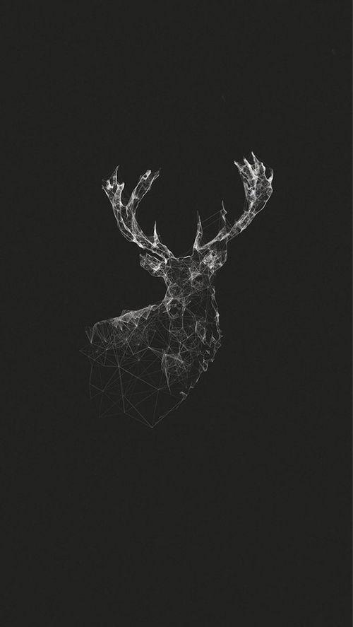 • photography art Black and White sad beautiful white perfect hipster vintage pain indie b&w black Grunge animal Black & White dark wallpaper retro Alternative darkness blackandwhite background pale sweater-weatherrx •