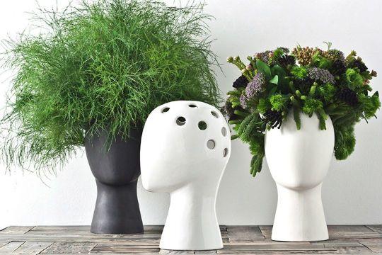 Siembra plantas en la cabeza de un maniquí
