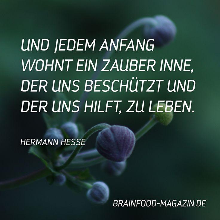 Die Lyrik von Hermann Hesse, macht mich immer wieder, auf eine angenehme Art, nachdenklich. Vielleicht geht es dir auch so? Dann kann ich dir dieses Buch nur bestens weiterempfehlen:  Hier geht es zum Buch!  »Jedem Anfang wohnt ein Zauber inne«: Lebensstufen Weitere Quellen für deine Inspiration findest du auf unserem Instagramprofil Teile diesen …