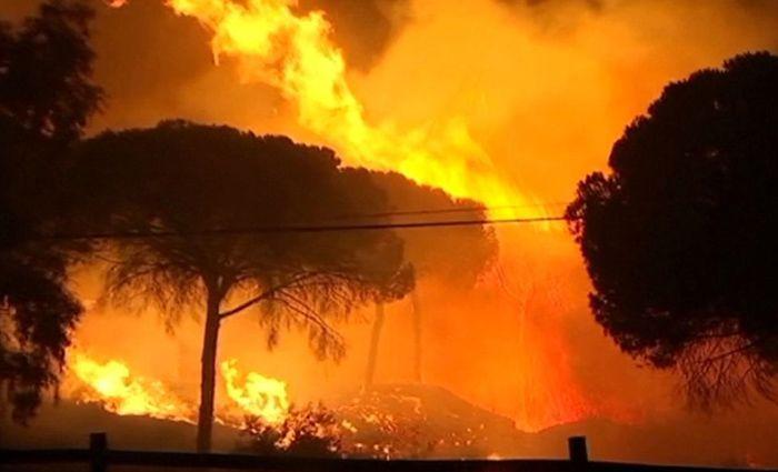 Kebakaran Hutan di Spanyol Ungsikan 1500 Penduduk : Pemerintah Spanyol pada Minggu (25/6/2017) mengatakan bahwa pihaknya mengungsikan setidaknya 1.500 orang dari rumah perkemahan dan hotel lantaran terjadinya Kebakaran