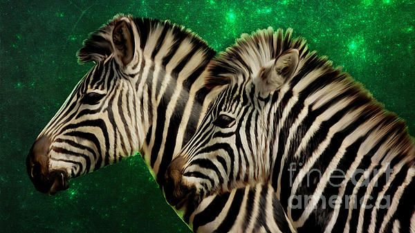 Twin zebras digital painting with green fractal background by Tracey Everington of Tracey Lee Art Designs
