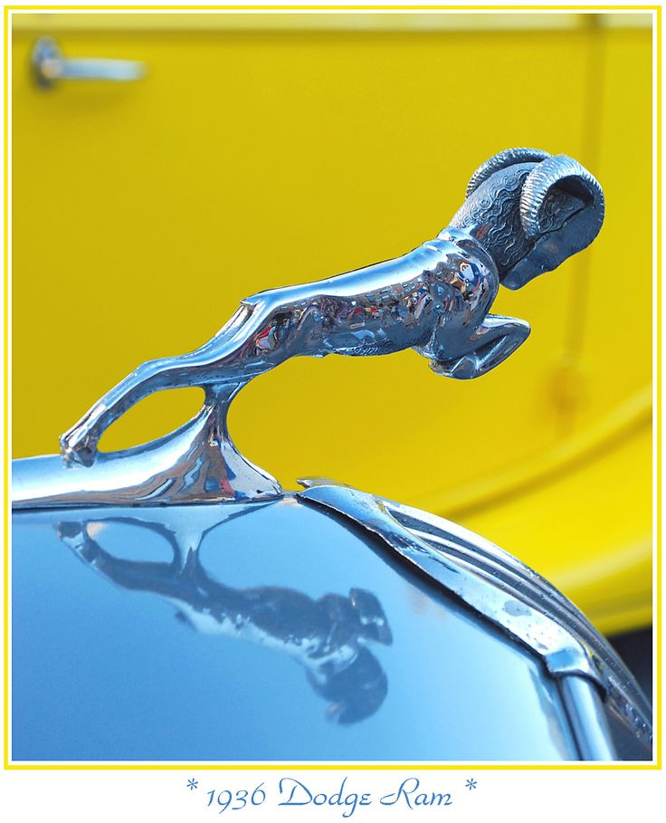 Dodge Ram hood ornament on blue hood may not be dodge ram ...