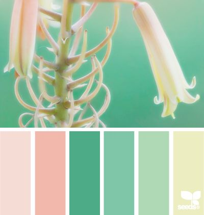 Colour palette idea
