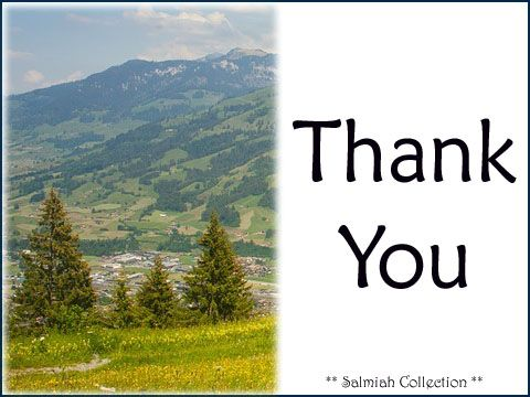 Salmiah Collection: Thank You Card 28