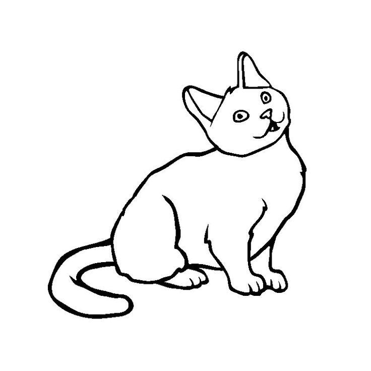 Souvent Plus de 25 idées uniques dans la catégorie Coloriage chaton sur  YX76