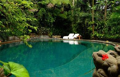 natural spring water pool below our villa in ubud, bali, indonesia