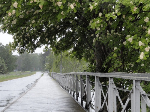 Rainy Day in Vaasa, Finland, photo by foide on flickr      photo by foide flickr