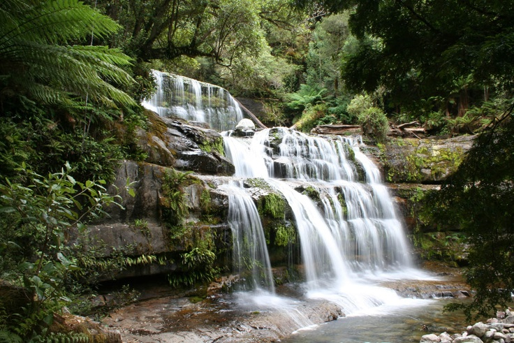 Liffey Falls. Central Tasmania