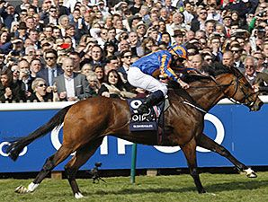 Gleneagles cruised to a clear win in the QIPCO Two Thousand Guineas (Eng-I) May 2 at Newmarket and provided trainer Aidan O'Brien a record-equaling seventh victory in Europe's first classic of the year.
