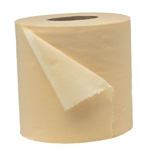 best seed tape ever: toilet paper.  Planting tiny seeds is easy with this simple gardening trick.