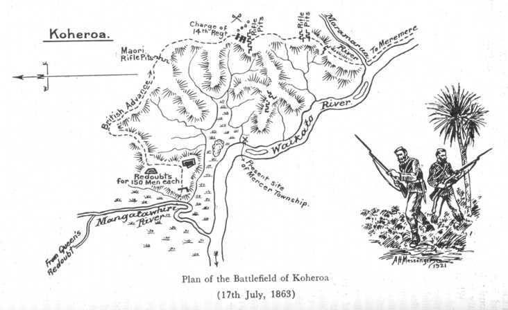 koheroa.jpg (732×448)