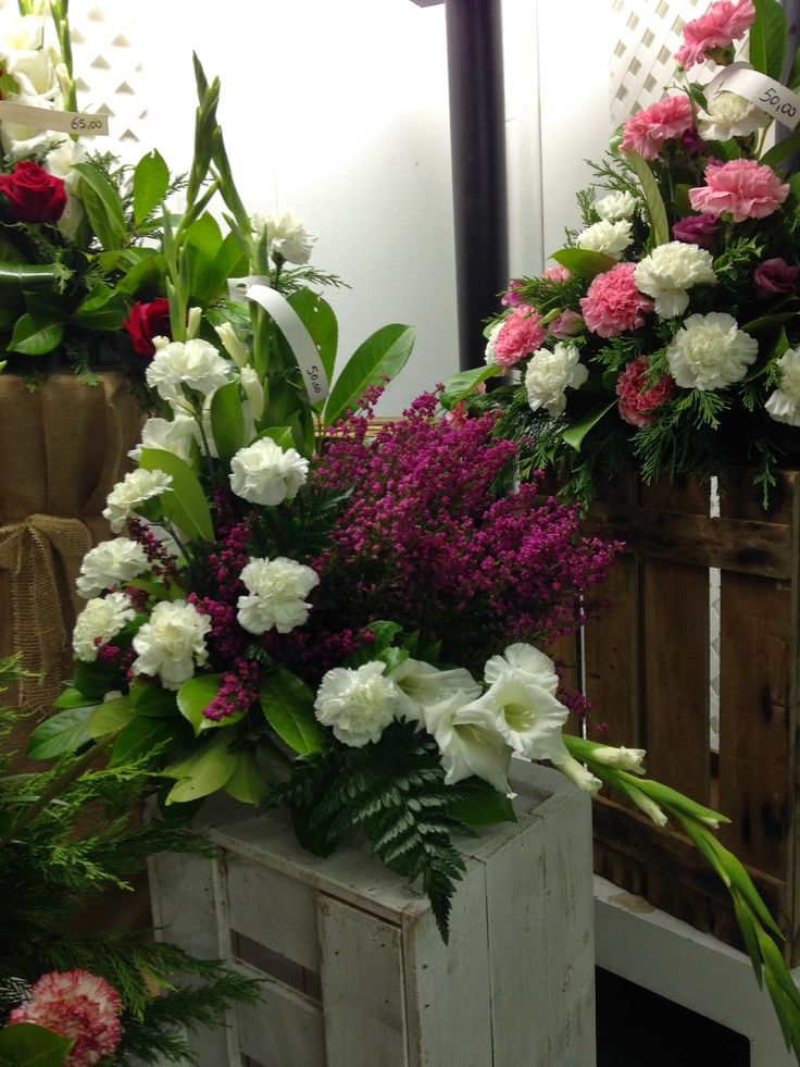 centro de jardinera decoracin y mascotas en sopelana bizkaia con ms de