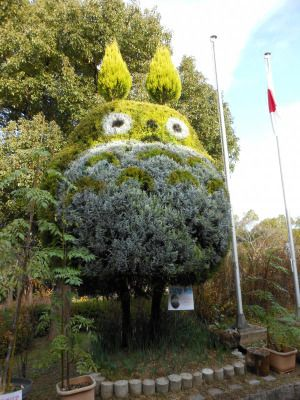 Totoro Tree- this is certainly going on the Nefarious House Plans To-Do List.