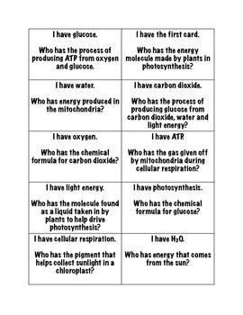21 best images about Photosynthesis & Respiration on Pinterest ...