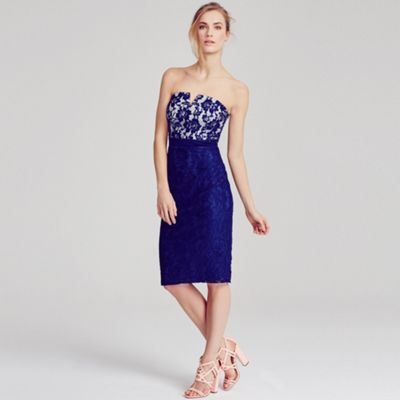Little Mistress Navy and cream lace bandeau dress- at Debenhams.com