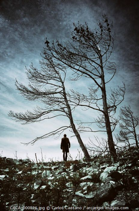 Silhouette of a man walking in a desolate lifeless field with burnt rocks and trees