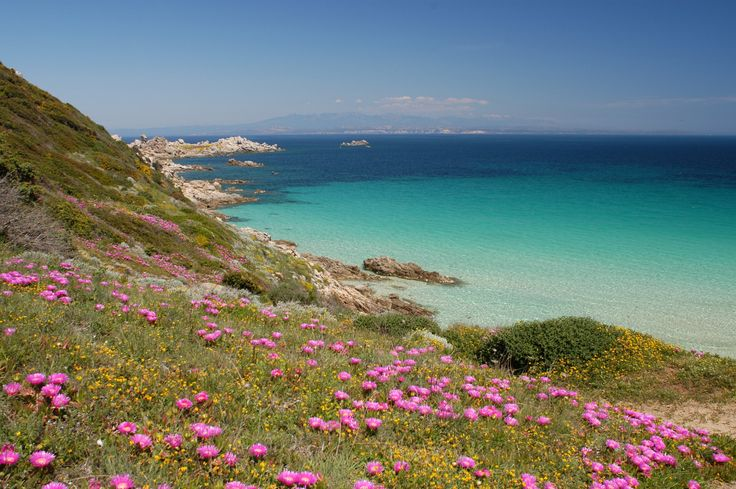 What a stunning coastline!