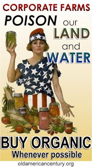 The top 12 foods that you should eat organic http://www.thedailygreen.com/healthy-eating/eat-safe/dirty-dozen-foods#fbIndex1: Comprar Productos, Aguas Comprar, Buy Organic Bette, Buy Local, Foods Drinks Exercise, Envenenar Nuestras, Corporativas Envenenar, 12 Food, Productos Orgánicos