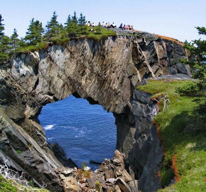 Berry Head, Newfoundland