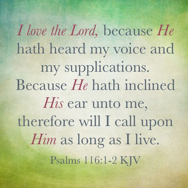 I love the Lord, because he hath heard my voice and my supplications. Because he hath inclined his ear unto me, therefore will I call upon him as long as I live. (Psalms 116:1, 2 KJV)