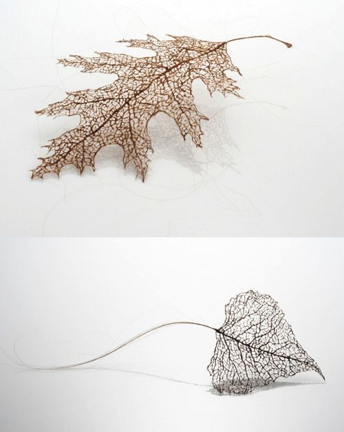 Intricacies of a leaf's veining are recreated by wrapping, stitching, and knotting together strands of human hair by Jenine Shereos