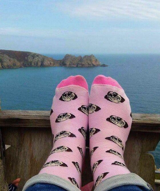 Pug socks 💕