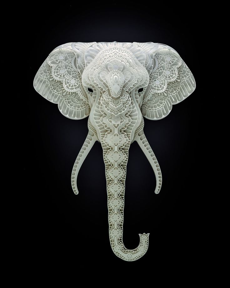 Endangered Species Cut from Paper by Patrick Cabral