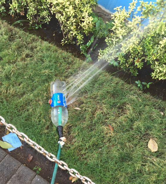 If you ever find yourself in a situation where you need to improvise a sprinkler, just stick a hose into a plastic bottle with some holes punched into it.