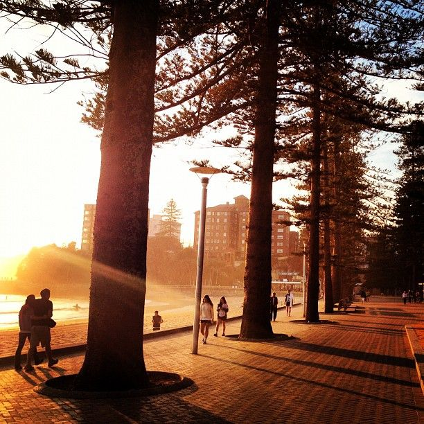 Sea mist in the morning manly beach