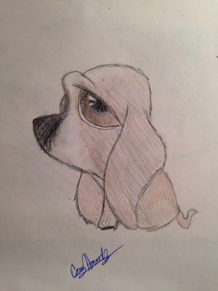 Cute hound puppy drawing Drawings Pinterest Hound puppies