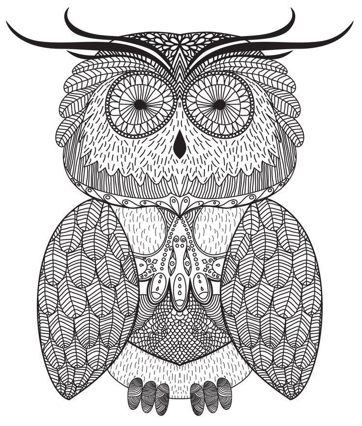 Cute Owl ) Owl, Color me badd, Coloring books