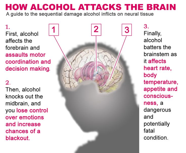 How Alcohol Attacks the Brain
