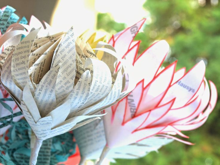freshly found - Mixed Bunch of Paper Proteas