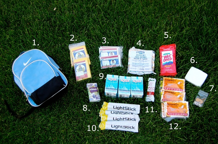 Image detail for -marta writes: how-to pack a car safety kit
